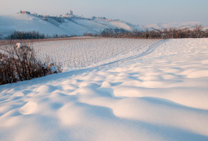 Langhe in inverno